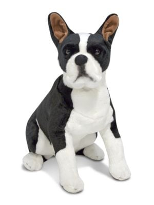 Plush Boston Terrier