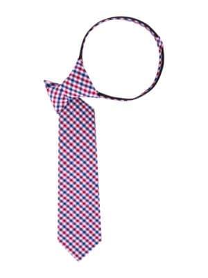 CheckPattern Cotton Tie
