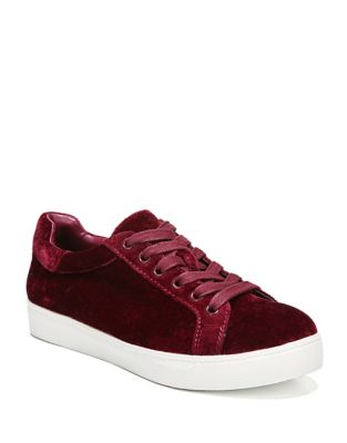 Caprice Velvet Sneakers by Circus by Sam Edelman