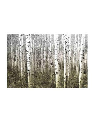 Aspen Highlands Wrapped Canvas Print