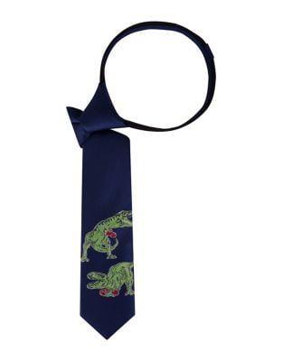 Boys Boxing Dinosaurs Graphic Tie