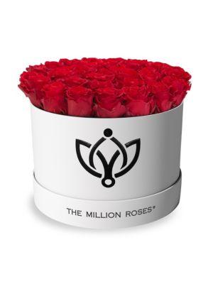 Premium Box Collection Roses in White Round Box