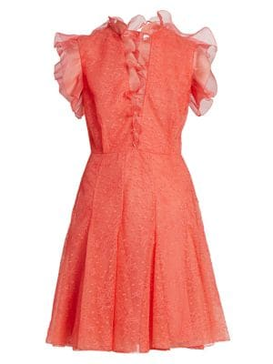 Ruffle Embroidered Tulle Dress