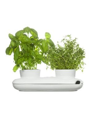 Duo Herb Pot