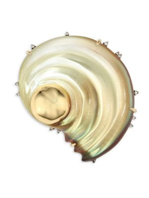 Lucite Sculptural Shell Pin