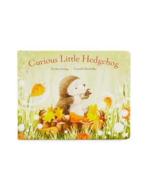Baby's Curious Little Hedgehog Book