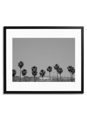 Hollywood Palm Trees Print