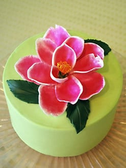 Elegant Cheesecakes - Magnolia Cake