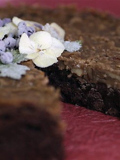 Blissful Brownies - Classic Chocolate Brownie Cake