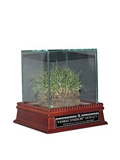 Steiner Sports - Freeze-Dried Grass from the Original Yankee Stadium