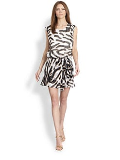 Diane von Furstenberg - Janey Zebra-Print Silk Dress