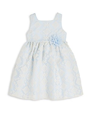Toddler's & Little Girl's Embroidered Organza Dress