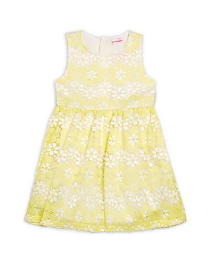 Little Girl's Floral Embroidered Sleeveless Dress