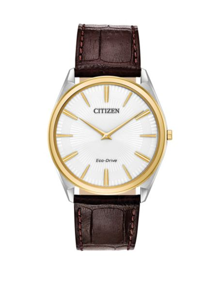 eco-drive-stainless-steel-leather-watch by citizen