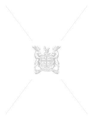 7ft Knight Ombre Slim Tree With 300 Warm White Led Lights And 619 Tips