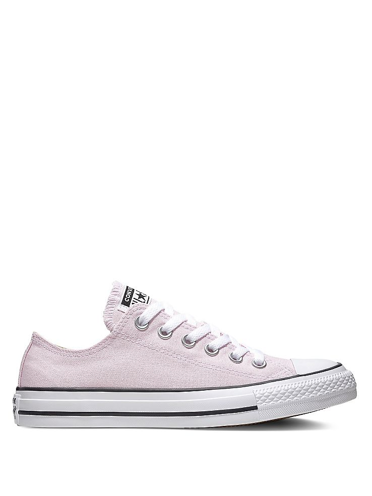 Converse Seasonal Colour Chuck Taylor All Star Canvas Low Top Sneakers