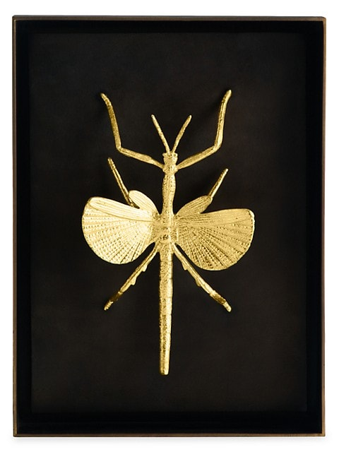Special Editions Flying Walking Stick Shadow Box