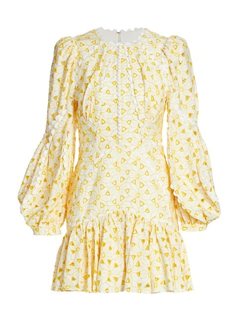 Walker Embroidered Cotton Mini Dress
