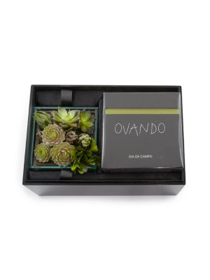 Dogwood Succulent Candle Box