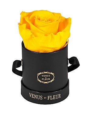 Venus Et Fleur Eternity De Venus Le Petite Square Eternity Roses