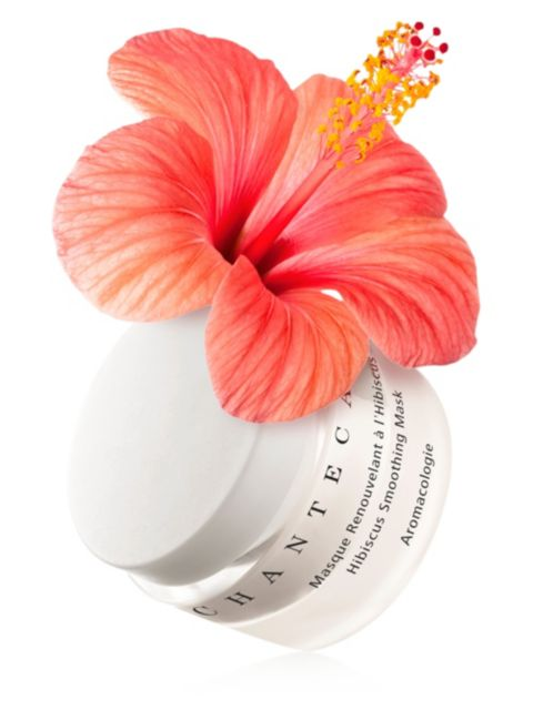 Chantecaille Hibiscus Smoothing Mask | SaksFifthAvenue