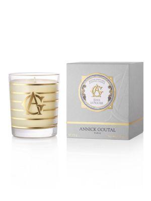 Sous le Figuier Perfumed Candle / 5.8 oz.