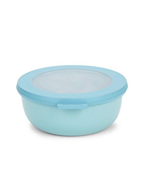 Multi Circle Bowl